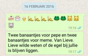 whatsapp knuffel Pepe