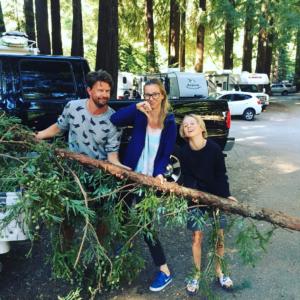 De redwood-tak die je op en door je dak kreeg.